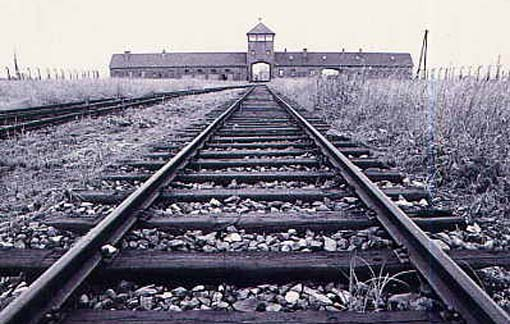 research paper on survival in auschwitz